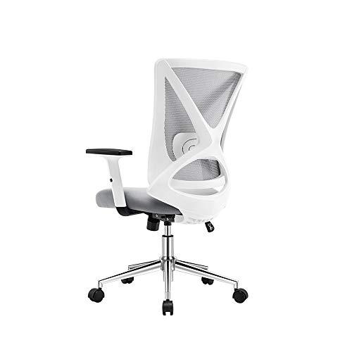 HOLPPO-Desk Stuhl Bürostuhl Verstellbare Armlehnen und Lendenwirbelstütze Ergonomische X-Form-Entwurf Netz Computer-Stuhl for Home Office-Studie Gaming Schreibtisch Stühle (Color : White)