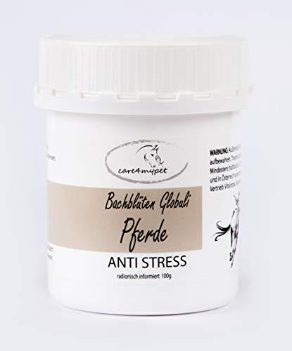 Bachblüten Globuli Großpackung 100g. Speziell für Pferde in Grösse 6. Anti-Stress kann sich positiv auf negative Gemütszustände auswirken.
