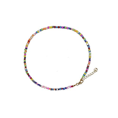 AEVIO Rainbow Choker Colorful Seed Beads Short Necklace Fashion Jewelry Accessories for Summer Hawaii Beach, Trend All-Match for Girls and Ladies