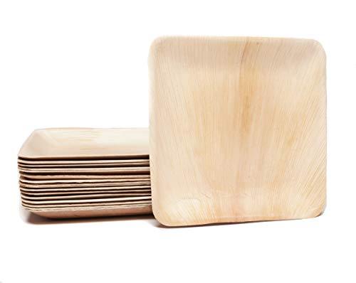 Pure Dishes - Umweltfreundliches Palmblattgeschirr - Palmblattteller - 100% biologisch abbaubar – Biogeschirr - Einweggeschirr - Einwegteller - Wegwerfgeschirr - Partygeschirr (25, 15x15 cm)