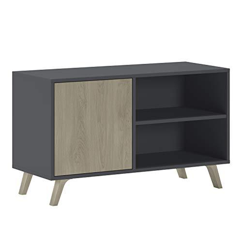 SelectionHome - Mueble TV 100 con puerta, mueble de salon comedor, Modelo Wind, color Gris Antracita y Puccini, medidas: 92 cm (largo) x 40 cm (fondo) x 57 cm (alto)