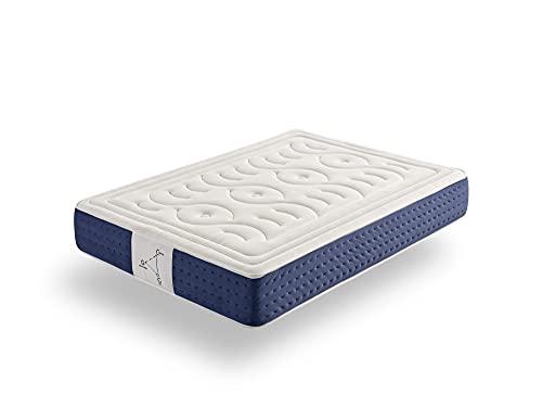 ECCOX - Colchón Viscoelástico Memory Sistem Plus - Altura 30 cm - Núcleo HR de Alta Densidad Flexcel - Acolchado Superior Visco Grafeno + Visco Carbono + Visco Gel - Firmeza Medio-Alta (120x180 cm)