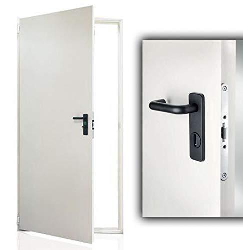 Puerta fabricada en chapa de acero galvanizado - Barnizada -