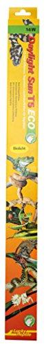 Lucky Reptile Tube Fluorescent Lumière du Jour T5 Eco DS5E-14 14 W