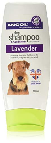 Ancol Lavendel Hond Shampoo