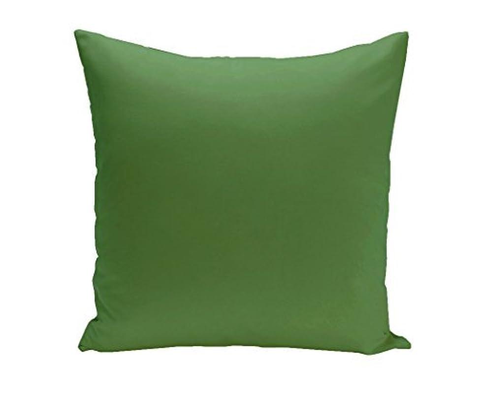 放置再生的セールスマンE by design O5PSO-N46-Leaf-16 Solid color Decorative Leaf Outdoor Pillow [並行輸入品]