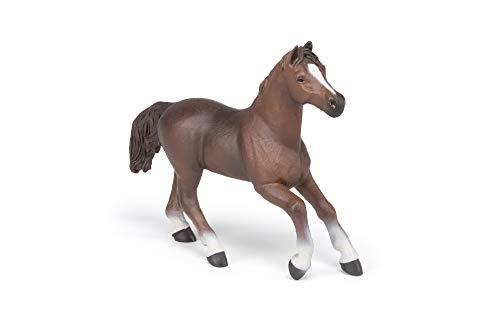 Papo 51075 Pferde, FOHLEN UND PONYS Anglo-Araber Stute, Mehrfarben