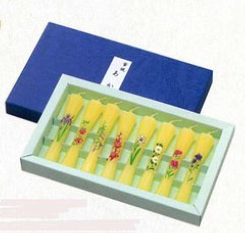 野望シニス植生鮮やかな花の絵ローソク8本 蜜蝋(みつろー) 茜 絵ローソク