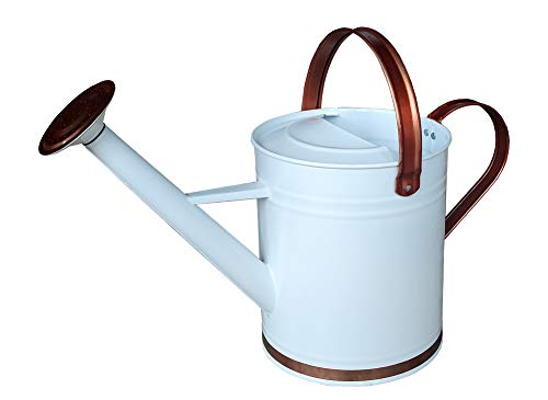 yourjoy Galvanized Metal Watering Can with Long Spout, 4L mall Retro Design Watering Can for Outdoor Indoor House Garden Plants White