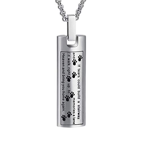 Hearbeingt Cremation Jewelry Necklace for Ashes, Pet Paw Print Memorial Pendant Made of 316L Stainless Steel, Dog Ashes Keepsake Locket for Men for Women