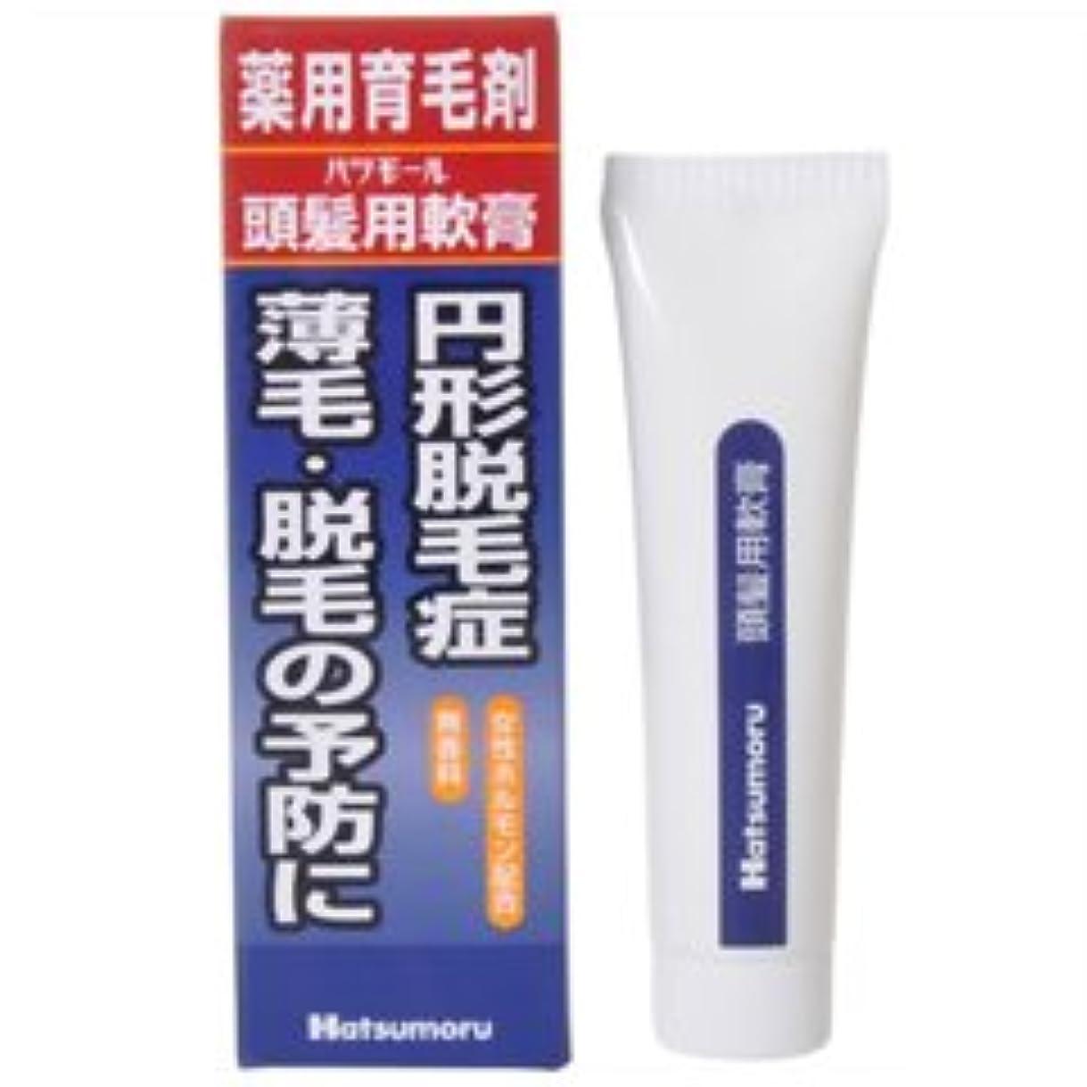 住人仮定する動【田村治照堂】ハツモール 頭髪用軟膏 25g
