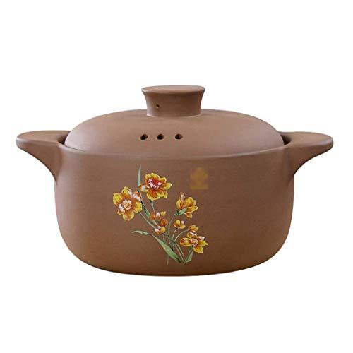SHAAO Médicament spécial régime Alimentaire pour Casserole en céramique Casserole de ménage pour Haute température (Size : 2.5L)
