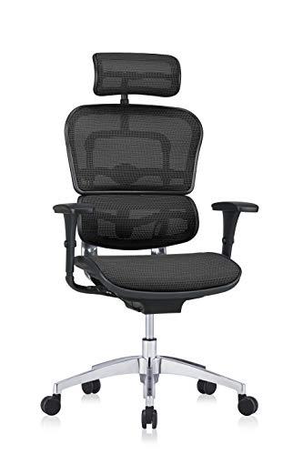hjh OFFICE 652425 Profi Chefsessel ERGOHUMAN EDITION Netzstoff Schwarz Bürostuhl Drehstuhl ergonomisch mit Vollausstattung