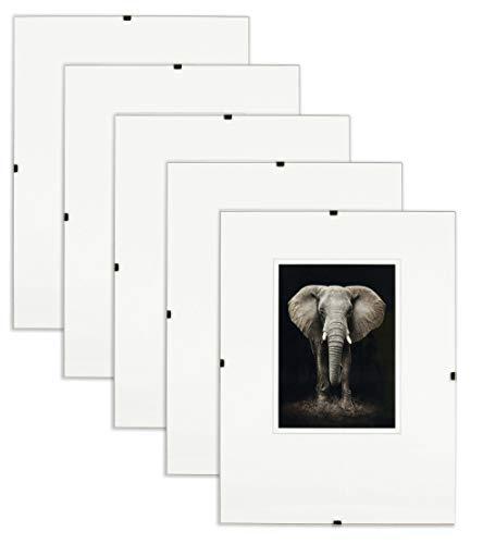Postergaleria Bilderrahmen Rahmenlos | 13x18cm | Set 5 Stück | Klar Plexiglas | mit Clips | Bildhalter für Fotos Poster | Plakatrahmen | viele Größen | gut für Wohnzimmer, Esszimmer, Küche