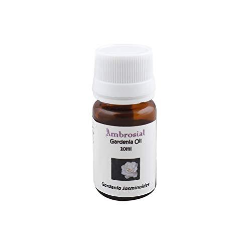 Aceite esencial de gardenia, 100% puro y natural (Gardenia Jasminoides), Fragances of Heaven, de Ambrosial.