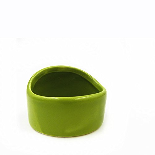 Fitlyiee Ceramic Chew-Resistant Hamster Bowl Dish for Hamsters Hedgehog Guinea Pig and More Small Animals (Green)