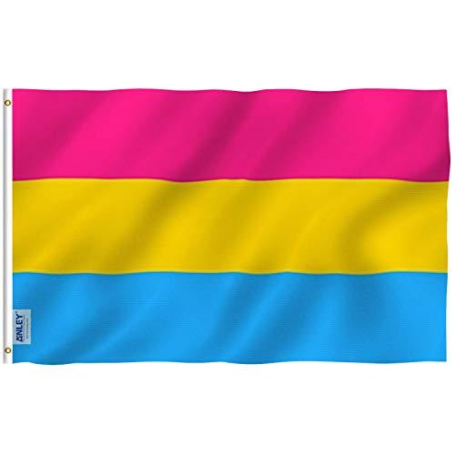 Anley Fly Breeze 3x5 Fuß Pansexual Pride Flag - Lebendige Farbe und UV-beständig - Canvas Header und doppelt genäht - Omnisexuelle LGBT Flags Polyester mit Messingösen 3 x 5 Ft