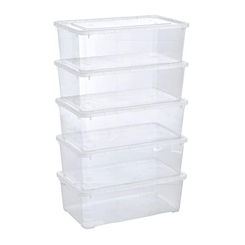 Grizzly 5 x Caja de Almacenaje con Tapa de 5 L - Cajón de Plástico...