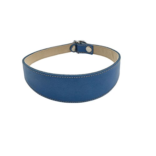 BBD Pet Products Lurcher Collar Deslizante, Talla única, 3/4 x 16 a 18 Pulgadas, Royal