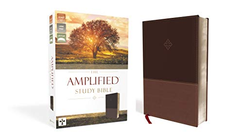 The Amplified Study Bible, Leathersoft, Brown