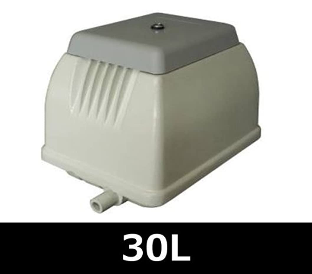 痛み手順頻繁に日本電興(NIHON DENKO) 電磁式エアーポンプ 30L NIP-30L ホワイト