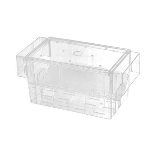 sourcingmap Aquarium Fish Tank Plastique Transparent Fry pondoir avec Filet pour Aquarium d'élevage