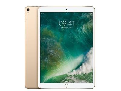 Apple iPad Pro 10.5 512GB Wi-Fi - Gold (Renewed)