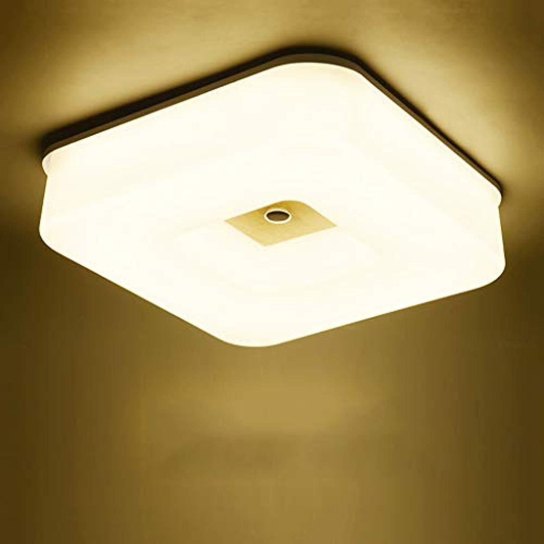 Moderne, einfache Leuchte LED schaltet Gang Balkon Bad Küche ...