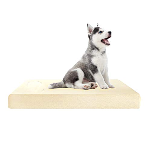 Abeera Dog Bed Memory Foam | Crate Mattress | Orthopedic 100% Visco Elastic Mattress Off-Cut/Anti-Microbial Pressure Relief Bed Floor Cushion for dogs (40 x 27 x 2 inches)