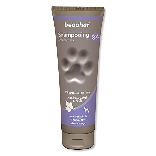 Beaphar Champú Alta Cosmética Cachorros, Un tamaño 250 ml 250 ml ⭐
