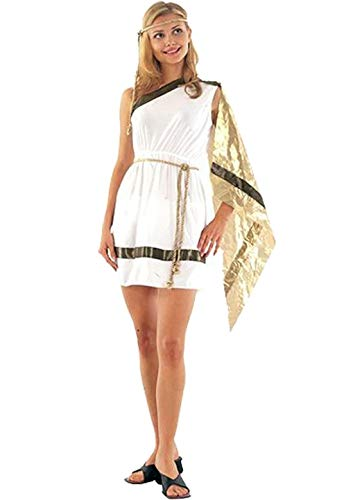 Ladies Roman Goddess Ancient Greek Toga Fancy Dress Costume Outfit U37158 by Fancy Pants Party Store