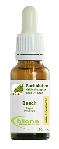 Joy Bachblüten, Essenz Nr. 3: Beech; 20ml Stockbottle