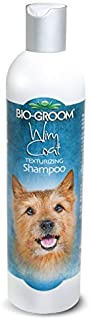 Shampoo For Wiry Hair