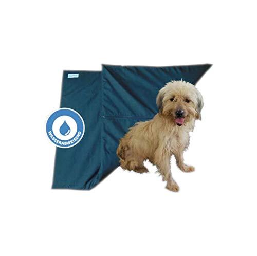 Biomaget24, 88 cm x 43 cm Magnetfeldmatte, Magnetfelddecke, Magnetfeldtherapie für Tiere, zur Behandlung bei Arthrose, Spondylose, Hüftgelenksdysplasie, Ellenbogendysplasie beim Hund und Katze