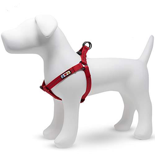 PAWTITAS Reflektierendes Hundegeschirr einstellbar für sportliche Aktivitäten | Hundegeschirr kleine Hunde recyceln für besonders kleine Hunde | Kleine Rote Kirsche Geschirr für Hunde