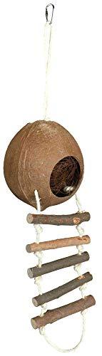 TX-62102 Coconut House Single 13 cm