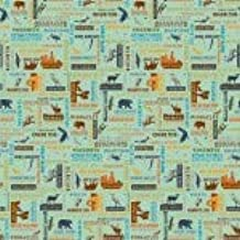 National Parks Sea Green Fabric