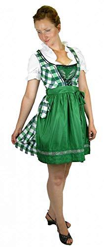 Country Life Trachtenmode Damen Dirndl Trachten Dirndlkleid Gras/Silber Größe 42