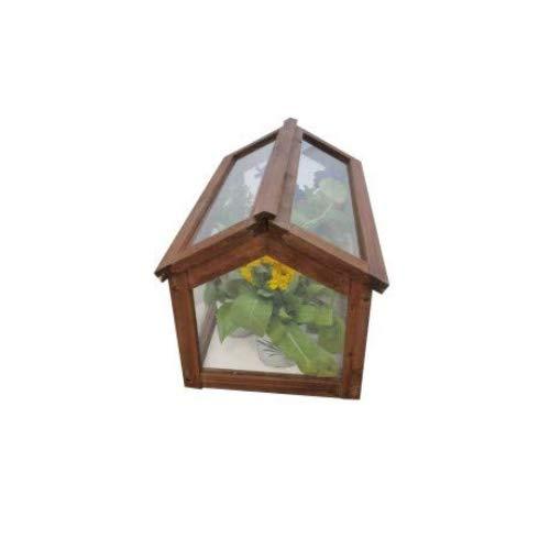 Invernadero Gardiun Narciso 51x31x30, 5 cm