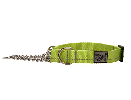 RC Pet Products 1 Inch Primary Collection Training Martingale Dog Collar, Large, Lime