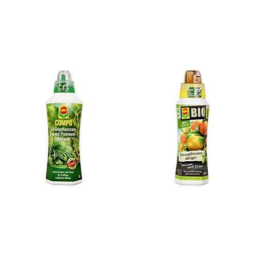 COMPO Grünpflanzen- und Palmendünger für alle Zimmer-, Balkon- und Terrassenpflanzen, 1 Liter & BIO Zitruspflanzendünger für alle Zitruspflanzen-Arten, Natürlicher Spezial-Flüssigdünger, 500 ml