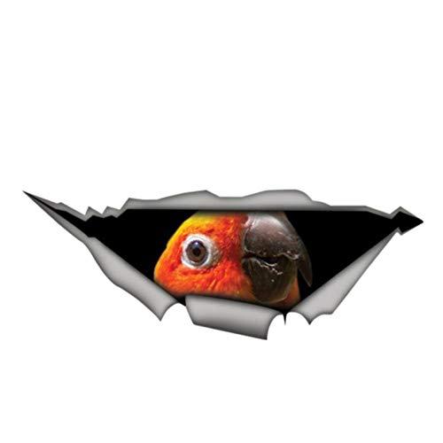 GDYL Etiquetas Engomadas del Coche Personalidad Pegatina para Coche Sun Conure Parrot Bird 3D Vinilo Impermeable Ventana De Coche Accesorios PVC Decorativo 13 Cm * 5 Cm