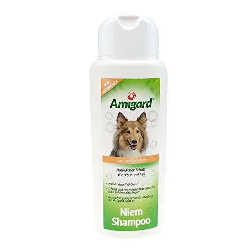 Amigard Niem-Shampoo Spezial-Shampoo für Hunde & Katzen, natürliche Inhaltsstoffe zur Bekämpfung von Ungeziefer wie Flöhen, Zecken, Milben und Läusen, 250ml