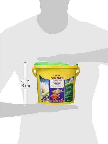 sera 07075 pond flakes 3800 ml – das lange schwimmende Flockenfutter für kleinere Teichfische - 8