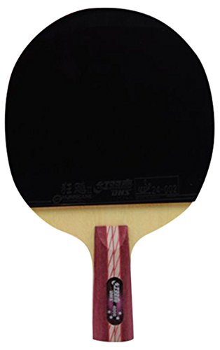DHS 40064estrellas raqueta de tenis de mesa (Penhold)