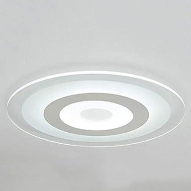 ZWDEDIAN Acrylique LED Plafonnier Luminaire Moderne Simplicité Rc Éclairage Rond Ultra-Mince Plat Lampe Nordique Unique Pende