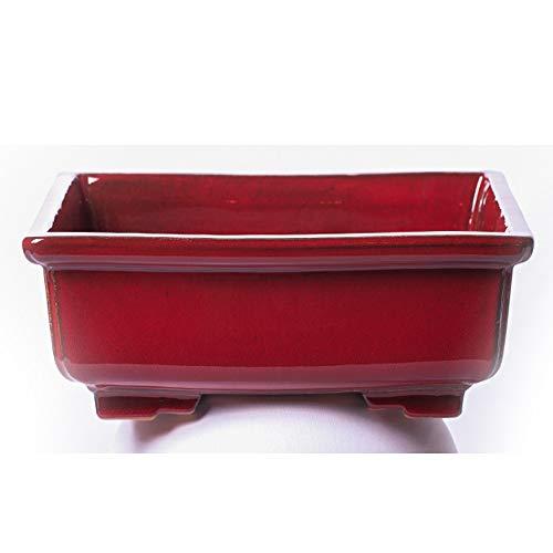 Alfareros Damian Canovas Maceta para Bonsai DE Barro Y ESMALTADA EN Color Rojo Medidas 28X22X10CM.Modelo Kobe. con TU Compra TE REGALAMOS EL Plato.