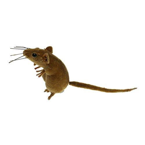 F Fityle Mouse Realistico Realistico