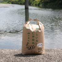 JA四万十 ヒノヒカリ玄米 10kg
