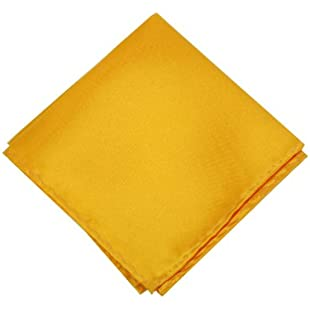 Satin Silk Pocket Square Hankie Hankerchief Wedding Formal Suit Blazer Jacket Italian:Iracematravel